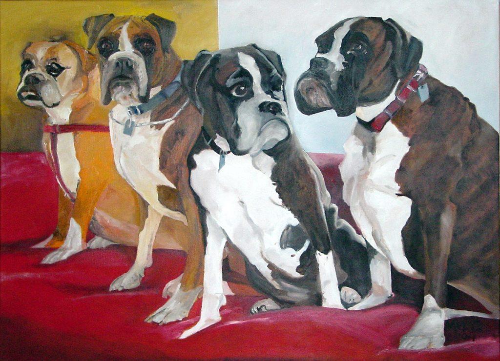 Vier Boxers (hondenras) op een rood kleed.
